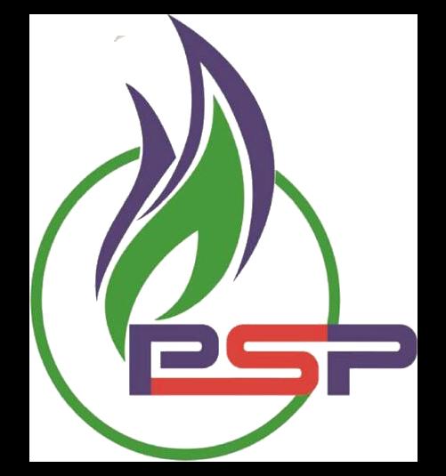 PT. PSP ( Pro Solusi Perkasa )